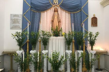 08.12.2016 - OMELIA DELLA SOLENNITÀ DELL'IMMACOLATA CONCEZIONE DELLA BEATA VERGINE MARIA